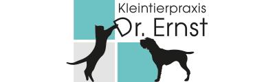 Logo-Dr.Ernst