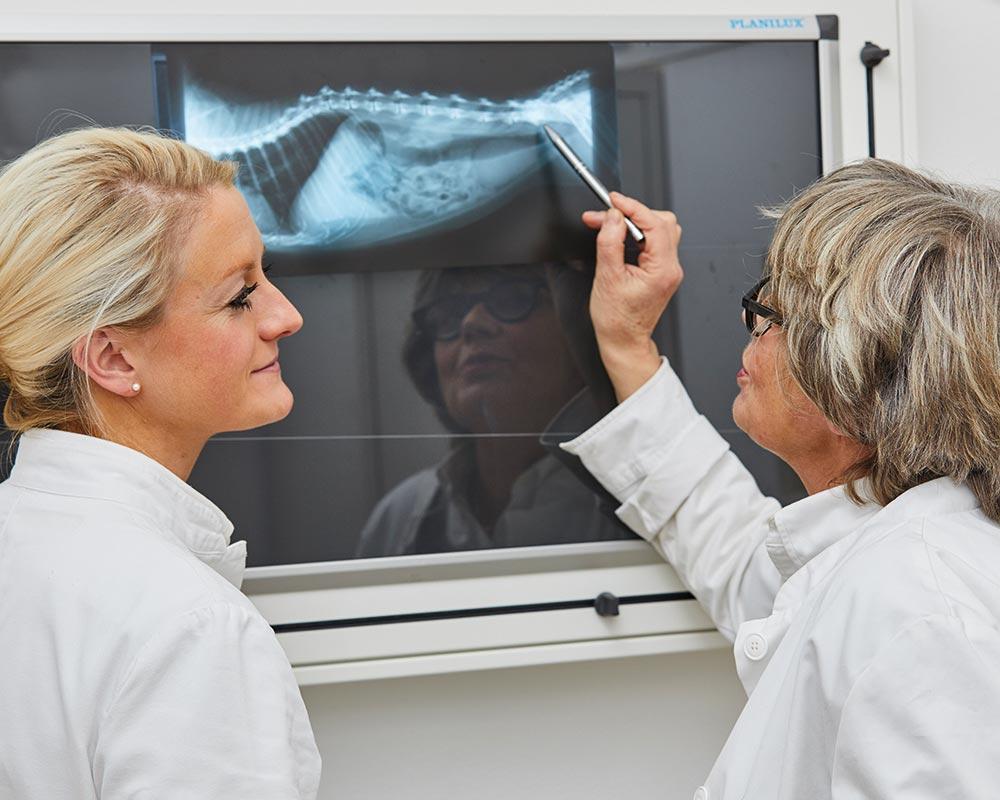 Leistungen-Röntgen